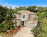 1806 Madison Ivy Circle, Apopka image