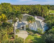 2743 Buckthorn Way, Naples image