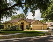 4703 Stone Hollow Court, Valrico image