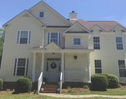 2557 Wessinger Road, Chapin image