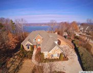 481 Panorama Way, Guntersville image