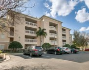 1368 Centre Court Ridge Drive Unit 302, Reunion image