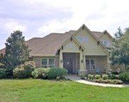 420 E Hickory Ridge Circle, Argyle image