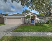 5917 Tealwater Place, Lithia image