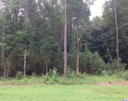 Lot 41 Black Water Cove, Conway image