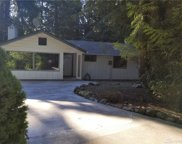 10608 107th St Ct, Anderson Island image