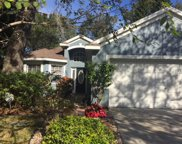 4715 Dunnie Drive, Tampa image
