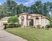 1736 Imperial Palm Drive, Apopka image