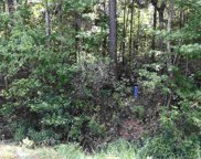Lot 5 Chow Ln., Conway image