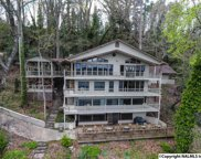 1011 Pine Island Point, Scottsboro image