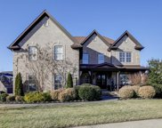 1009 Alice Springs Circle, Spring Hill image