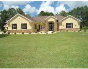 10102 Breezy Pines Court, Weeki Wachee image