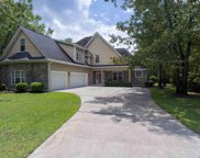 13 Deer Moss Ct., Pawleys Island image