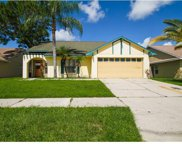 7048 Hollowell Drive, Tampa image