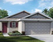 5128 White Chicory Drive, Apollo Beach image
