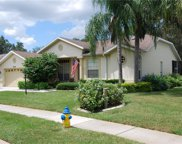 11141 Tee Time Circle, New Port Richey image