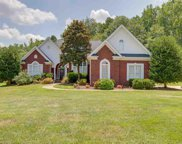227 Chestnut Springs Way, Williamston image