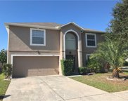 10401 Fly Fishing Street, Riverview image
