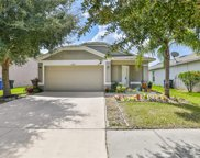 8029 Carriage Pointe Drive, Gibsonton image
