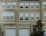 3033 Pointeview Drive, Tampa image