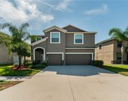 12352 Cricklewood Drive, Spring Hill image
