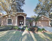 7208 Yardley Way, Tampa image