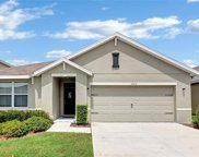 10015 Geese Trail Circle, Sun City Center image