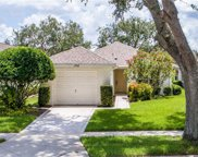 1748 Hunters Greene Court, Mount Dora image