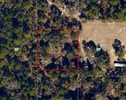 Woodpecker Unit -, Tallahassee image