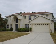 12208 Still Meadow Drive, Clermont image