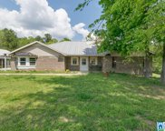1210 Co Rd 61, Clanton image