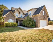 415 Waterford Cove Trl, Calera image