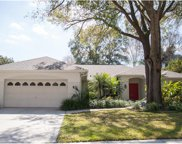 13712 Wilkes Drive, Tampa image