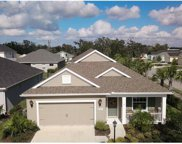 4237 Pine Meadow Drive, Parrish image