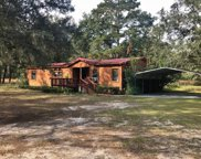 4543 LOWE LAKE ROAD, Wellborn image