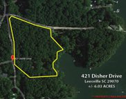 421 Disher Drive, Leesville image