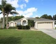 4002 Beau Rivage Court, Kissimmee image