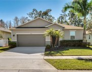4708 Blue Diamond Street, Kissimmee image