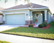 12858 Geneva Glade Drive, Riverview image