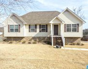20 Mountain Oaks Ln, Odenville image