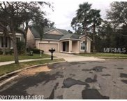14362 Red Cardinal Court, Windermere image