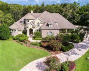 5501 Branch Oak Place, Lithia image