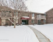 465 Raintree Court Unit 2D, Glen Ellyn image