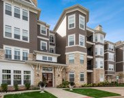 149 West Kennedy Lane Unit 207, Hinsdale image
