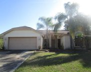 12106 Wildbrook Drive, Riverview image
