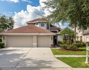 10125 Deercliff Drive, Tampa image
