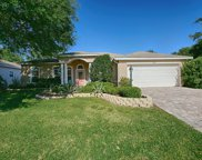 4928 Long Meadow Drive, Leesburg image