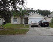 2210 Mallard Creek Circle, Kissimmee image