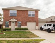 8512 Star Thistle, Fort Worth image