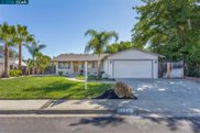 5553 Maryland Dr, Concord image